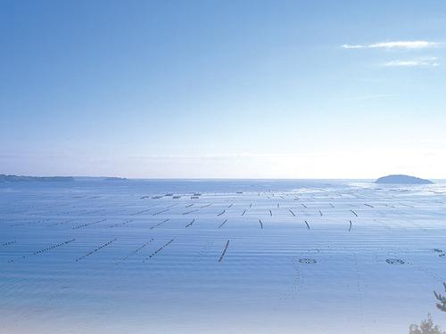 【 絶景プラン 】志津川湾の眺望を存分に楽しめるお部屋はゆとりのスイートタイプ!レイトチェックアウト12時