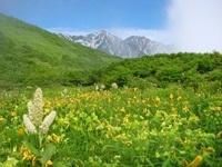 栂池高原 鷲の家◆近畿日本ツーリスト