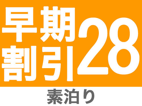 【早期割引28日前】ご予約限定プラン 【素泊まり】  〜予定が決まれば早めのご予約がお得!JR和歌山駅前の利便性が決め手です!〜