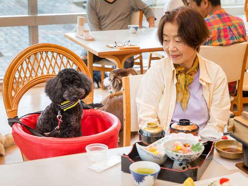 【ワンちゃんと旅満喫!◇ずっと一緒プラン♪】 愛犬と『温泉』も楽しめる!さらに『お好みの特典』も♪