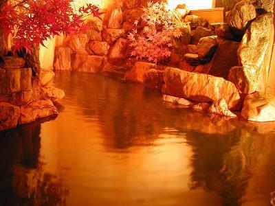 【貸切風呂50分無料でおもてなし】100%掛け流しの黄金の湯を贅沢独り占め! 湯〜たり 黄金の湯を楽しもう