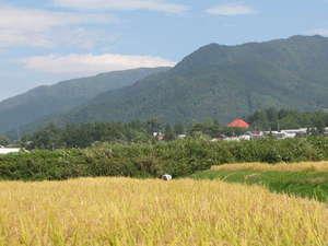 御宿 飯山館◆近畿日本ツーリスト