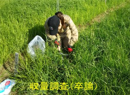 草地・飼料生産学研究室