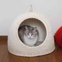 猫用ハウス・ベッドのおすすめ人気ランキング10選