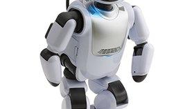 コミュニケーションロボットのおすすめ人気ランキング10選【介護・子供用に!】