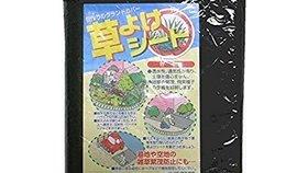 雑草対策におすすめな防草シートの最強人気ランキング10選