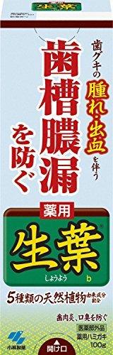 ・殺菌成分:〇 ・抗炎症成分:〇 ・研磨剤:〇 ・フッ素:×