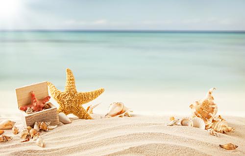 Пляж песок море картинки