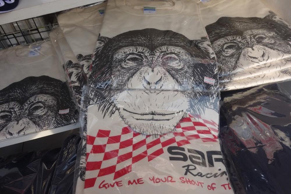 SARDチンパンジー