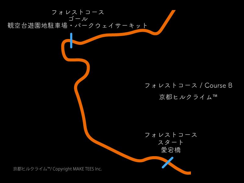 決勝区間コースB(出典:http://special-stage.racing/)