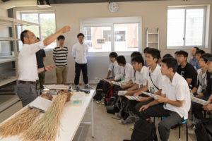 2013年に完成した作物生産ステーションの温室内で、教員によるイネについても簡単な講義もありました。本学ではイネの品種改良などの研究も行っております。