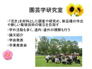 循環農学類からはもう1名北海道の新十津川町出身の先輩がお話ししてくれました。こちらはそのスライドの一部です。入学して3年生になると研究室に所属になりますが、この先輩は園芸学研究室に所属しており、ユリの花について研究をしています。研究室では論文の発表や学外の学会に参加したりします。