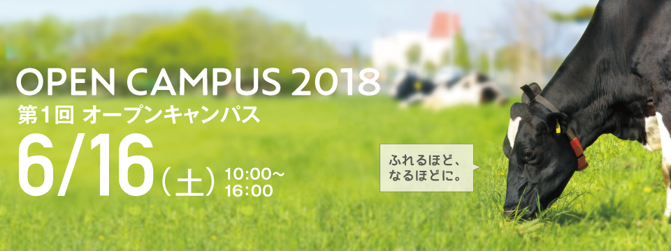 6月オープンキャンパス