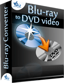 Blu-ray to DVD 2