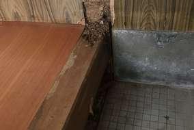 シロアリの被害が大きいですが、駆除はされておられます。