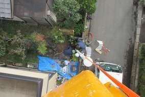 高所の上から撮影 珍しいショット!