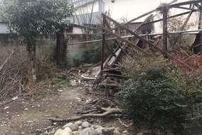 庭木・庭石も撤去