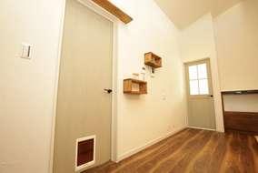 愛猫ちゃんのためのドア下扉とキャットウォーク、壁には消臭効果のある塗り壁を使用