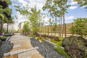 内側から観ると、竹垣に石、植物のコントラストが映えています