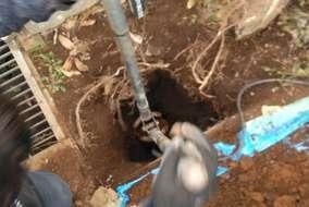 穴掘りスコップ