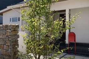 シンボルツリーには落葉樹のヒメシャラを。