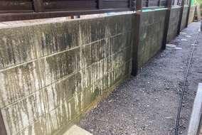 ブロック塀洗浄施工前