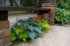 ベンチの下のちょっとしたスペースにも植栽をすることで景色が一変します。