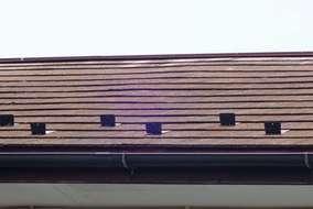 紫外線・雨によるカビコケ、屋根材の反りあがり