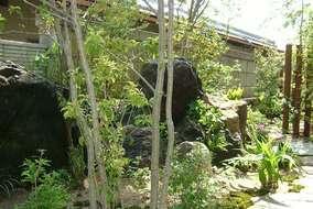 お庭の中は大きな石がいっぱいでした。