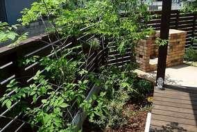 既存の板塀越に見える緑が家を引き立てます