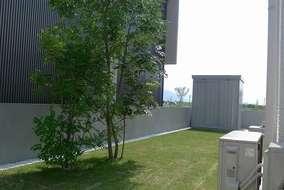芝生を敷き詰めた中にシンボルツリーとなるシマトネリコを植え、奥には使い勝手のよい収納庫を設置しました