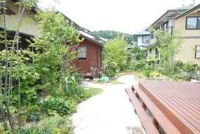 デッキ前の雑木の庭です。手前からアオダモ・もみじ・ソヨゴなどやクリスマスローズ等草花が植えてあります