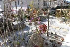 寒くても四季咲きつつじが、綺麗に庭を彩ります。