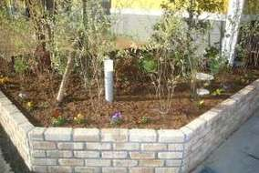 乾燥、雑草防止に今回もマルチバークを使用しました。