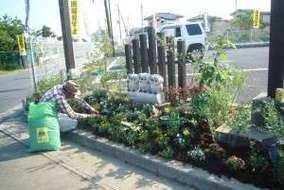 木柱でバックを整え、前にフクロウを3羽置き、木柱の両側からフクロウを囲むようにしたガーデニングの植栽