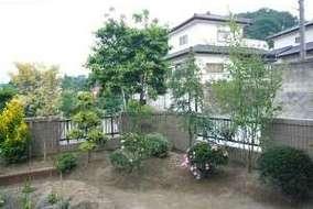 ソヨゴを主木に庭園の植栽をしました。
