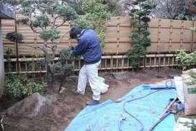 ヒイラギ移植水極め。  バーク堆肥・バーミキュラウト・遅効性肥料を混ぜてあります。