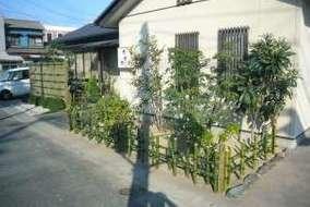 庭木も整理、剪定しました