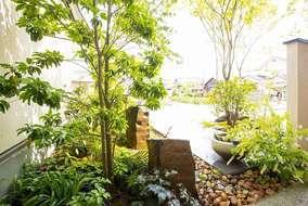 樹木の下は葉で日差しが遮られ柔らかな木漏れ日に・・