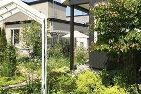 緑があふれる庭の入り口。マイガーデンオリジナルの白いアーチでお出迎え。