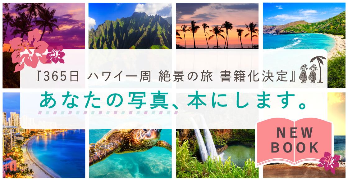 hawaii%e5%8b%9f%e9%9b%86