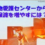 20161017_niigataken_ky_012