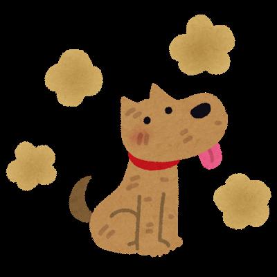 犬のシャンプーの仕方