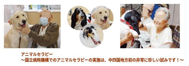 20170106_animalserapi_ky_007