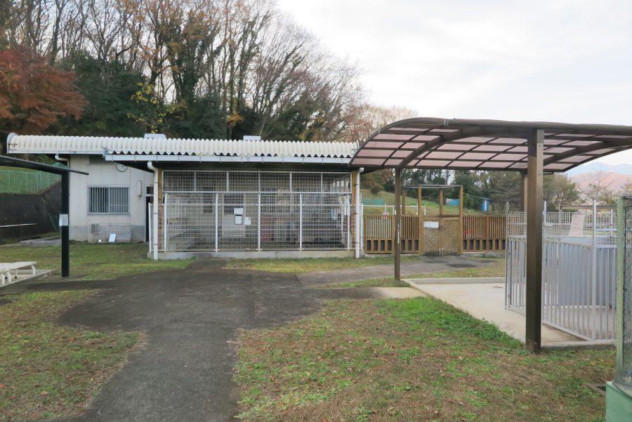 神奈川動物保護センターのふれあい広場