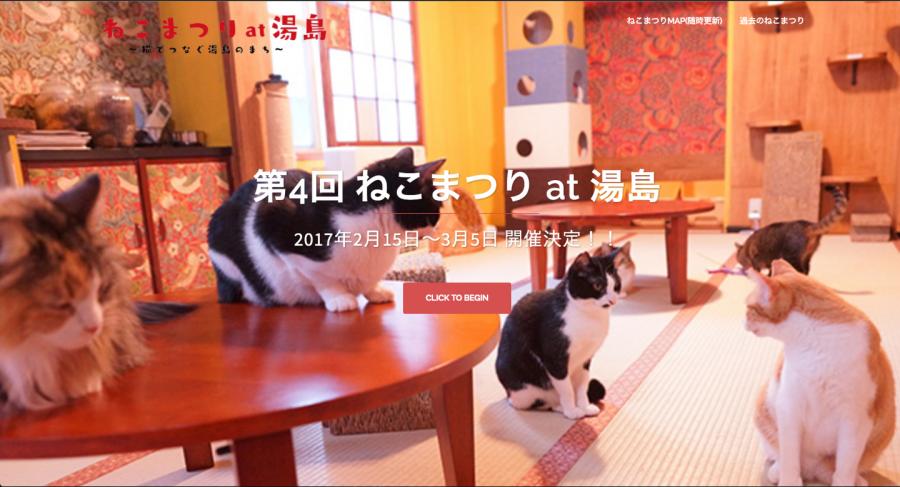 2017年1月猫ランキング