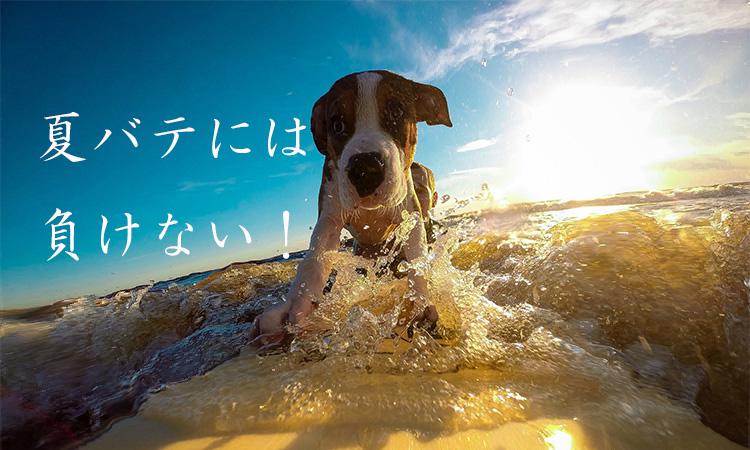 20170515_natsubate_ni_008