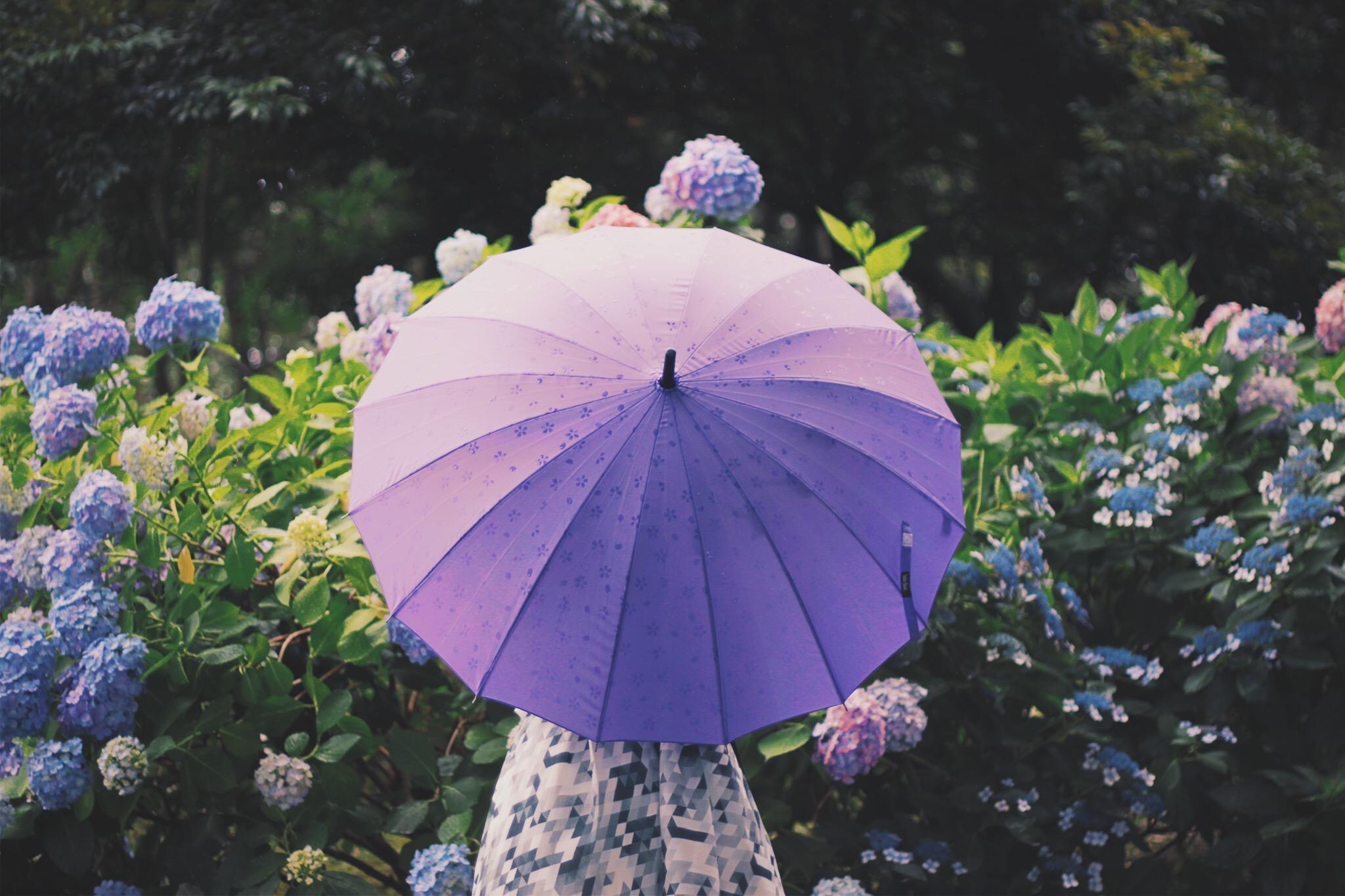 雨にも日差しにも負けない! ロリィタファッションのための傘