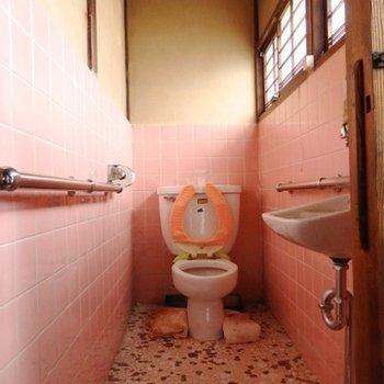 トイレも同じく激渋。