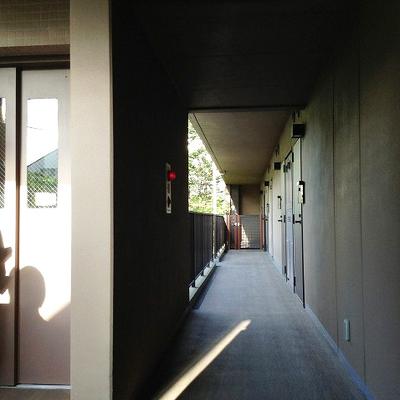 廊下も綺麗